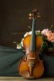 Vintage violin Stock Image