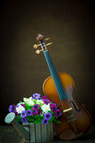 Vintage violin with old steel background Royalty Free Stock Image