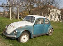 Vintage volkswagen beetle car rusting in the backyard in a villa Stock Image
