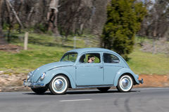 Vintage Volkswagen Beetle driving on country road. Adelaide, Australia - September 25, 2016: Vintage Volkswagen Beetle driving on country roads near the town of stock images