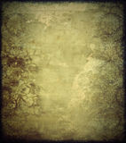 Vintage wall. With classical patterns Stock Photos
