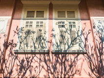 Vintage wall. Pink vintage windows on the wall against shadow of tree in garden Royalty Free Stock Photography