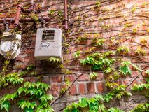 Vintage wall tree green leaf and old electronic control on red brick.Outdoor  sunshine light flare. Vintage wall tree green leaf and old electronic control on Stock Photos