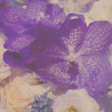 Vintage wallpaper background Royalty Free Stock Image