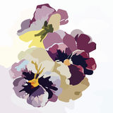 Vintage Watercolor Blooming Flowers Stock Photos