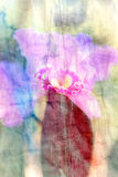 Vintage watercolor orchid flower Stock Images