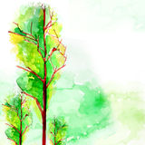 Vintage watercolor painting. On white Royalty Free Stock Photo