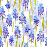Vintage Watercolor Pattern with Purple Provence Royalty Free Stock Photo