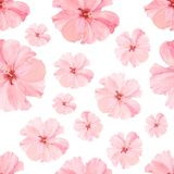 Vintage watercolor seamless pattern with pink hibiskus. Watercolor natural botanical illustration with summer flowers on white bac vector illustration