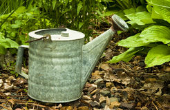Vintage watering can Royalty Free Stock Photography