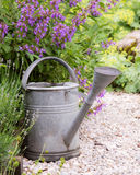 Vintage watering can Royalty Free Stock Image