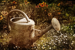 Vintage watering can picture Stock Photography