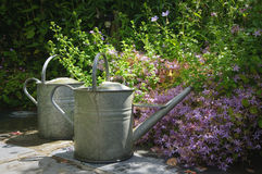 Vintage watering cans Stock Photos