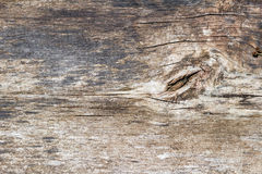 Vintage weathered shabby wooden plank closeup. Natural wood texture Stock Image