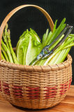 Vintage weaved reed basket of organic home grown vegetables Stock Photography