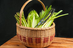 Vintage weaved reed basket of organic home grown vegetables Royalty Free Stock Photos