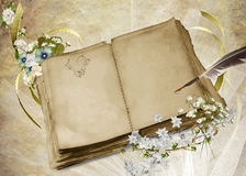 Vintage Wedding Book Royalty Free Stock Images