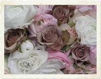 Vintage wedding bouquet. Early Color photographic reproduction of a very beauriful wedding bouquet with brownish (very special!) roses, and pink and white double stock photography