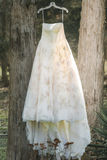 Vintage wedding gown hangs from a tree. Vintage style wedding gown hangs from two pine trees with the sun coming from behind it Royalty Free Stock Images