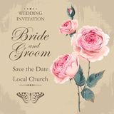 Vintage wedding invitation. With english roses bouquet with drops of dew Stock Image