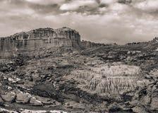 Vintage Western Desert. A sepia-toned vintage landscape image of the American West Stock Image