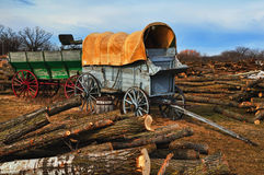 Vintage Western Wagon. Vintage canvas covered  western wagon in a tree logging area Royalty Free Stock Photo