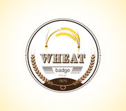 Vintage wheat ear badge design template. vector illustration. Royalty Free Stock Image