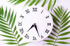 Vintage white clock and leaves of a tropis plant. Flat lay, top view. royalty free stock photos