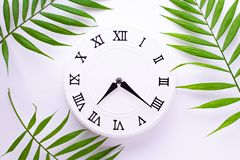 Vintage white clock and leaves of a tropis plant. Flat lay, top view. royalty free stock images