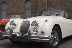 Vintage White Jaguar - Convertible Stock Photos
