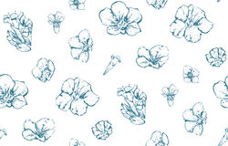 Vintage Wild Flowers Seamless Pattern Scattered Royalty Free Stock Photography