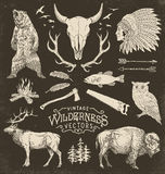 Vintage Wilderness Vector Illustration Set.  Royalty Free Stock Photos