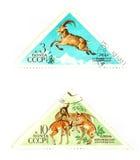 Vintage wildlife stamps Stock Photo