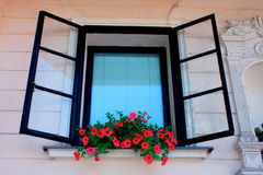 Vintage window with flower box. Vintage black window with flower box Royalty Free Stock Photography