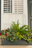 Vintage window flower box on historic home in Charleston, SC. Close up of a vintage window flower box filled with annual plants from local locations on historic Royalty Free Stock Image