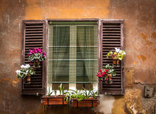 Vintage window with flowers in pots Stock Images