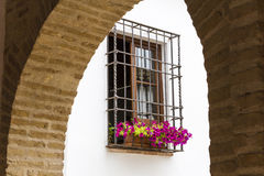 Vintage window. S with open and fresh flowers Royalty Free Stock Image