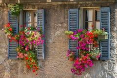 Vintage windows with fresh flowers. Vintage windows with open wooden shutters and fresh flowers stock photos