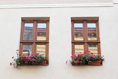 Vintage windows with open wooden shutters and fresh flowers stock images