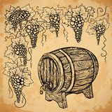 Vintage wine barrel and grape on aged paper background.  elements. Stock Photo