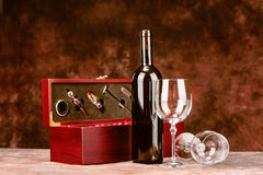 Vintage wine case Royalty Free Stock Photography