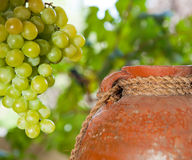 Vintage wine jug and grape Royalty Free Stock Photos