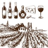 Vintage winery wine production handmade draft winemaking sketch. Old fermentation grape drink vector illustration. Traditional vineyard alcohol agriculture farm Royalty Free Stock Photo