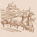 Vintage Wineyard Sketch Brown Colored Design Royalty Free Stock Photos