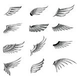 Vintage wings icon set isolated on white background. Design elements for logo, label, emblem, sign, brand mark. Vector illustration vector illustration