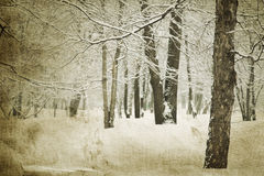 Vintage winter Stock Photos