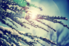 Vintage winter background royalty free stock photography