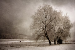 Vintage winter landscape Royalty Free Stock Images