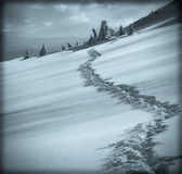 Vintage winter landscape Royalty Free Stock Photography