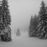 Vintage winter landscape Stock Photo